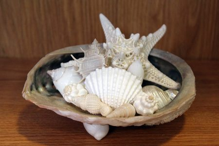 Abalone Shell Centerpiece